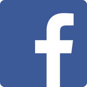 Logo Facebook - ViS Detachering